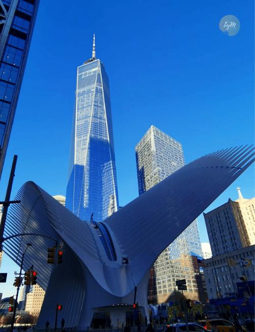 que hacer en Nueva York